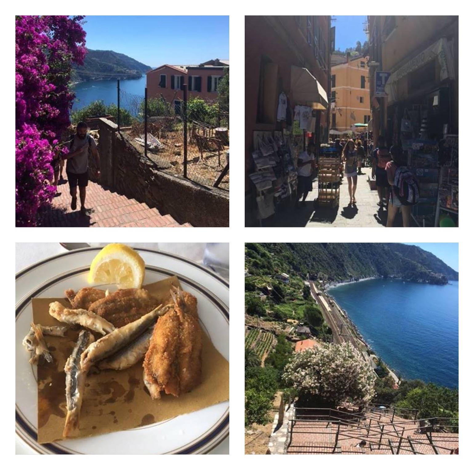 Cinque Terre photo collage