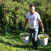David: Wine Company Owner & Producer, Leading with Italian